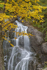 0792Fall09 (Robin Constable Hanson) Tags: stream water yellow autumn cabinrcascade granite landscapes vertical wate waterfall