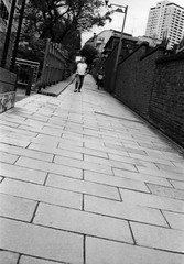 (gravity) (Dinasty_Oomae) Tags: minolta  minoltina  minoltinas s   tokyo slope    monochrome outdoor street bw blackwhite blackandwhite   arakawaku nishinippori  fujimizaka