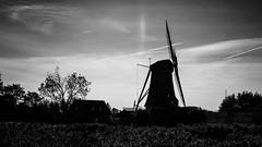 _DSC3939.jpg (astra50) Tags: braassemermeer geestmolen leimuiden molen