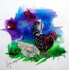 Cockerel and Chicken (Jayne Lancaster - Artist) Tags: painting chicken cockerel birds animals farm art artwork pen ink watercolour sketch brusho