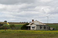 Seen better days (Derek Midgley) Tags: pa197413 canola old house iron rusted dilapidated maybe abandoned dwelling farm country victoria wind turbine energy generator rural spring flowers yellow green overcast cloudy sky