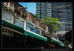 DSC09394 (YKevin1979) Tags: hongkong  yaumatei yaumateiwholesalefruitmarket   sony ilce7m2 a7ii a7m2 minolta rokkor manualfocus  md 50mm 50 f12 tree