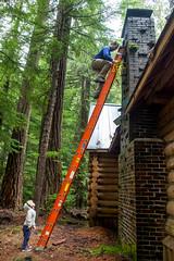 DSCF4323 (LEo Spizzirri) Tags: bevin morgan peter odin huck huckleberry shug cabin northwest seattle forest pacific mushroom moss josh betsy ladder green thick