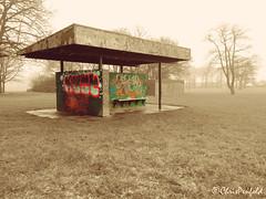 Sherdley Shelter (chrispenfold) Tags: park colour graffiti shelter sthelens damp selective merseyside sherdley sherdleypark
