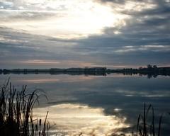 Pastel Morning (DASEye) Tags: morning lake reflection fog clouds sunrise reflections dawn nikon cloudy foggy reflected stormclouds dayseye davidadamson