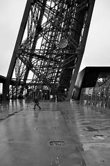 Parigi_107T (Dubliner_900) Tags: bw paris nikon toureiffel biancoenero parigi tamron1750mm28 d7000