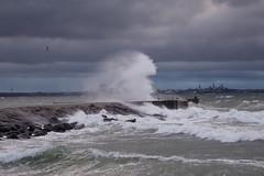 DSC00828 (Irina_Barakova) Tags: storm tallinn balticsea tallin winterstorm winterweather pirita