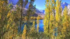 Passage of time !! (C@MARADERIE) Tags: autumn pakistan fall northernareas autumntrees skardu autumnalscene beautifulpakistan upperkachura kachuralake skarduvalley canond500 beautyofpakistan lakeupperkachura