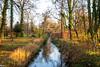 Last Autumn (scuthography) Tags: autumn trees fall water river golden photo foto walk ngc lastautumn flickrglobal kathrinschild