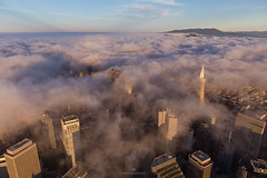 Foggy Aerial SF (tobyharriman) Tags: pictures sf sanfrancisco california above city travel art beautiful weather fog skyline sunrise canon landscape photography bay flying october colorful artist cityscape photographer skyscrapers unitedstates pyramid photos outdoor fineart scenic visit aerial adventure clear helicopter goldengatebridge bayarea pacificnorthwest prints transamerica custom robinson attractions r22 2014 aerialphotographer sanfranciscophotography tobyharriman timelapsepictures peakingthroughfog