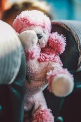 "Sara with her puppy dog ""Rozosina"" (rough translation - ""Pinkish"") :) (bortescristian) Tags: trip travel 2 summer holiday canon island eos mark july santorini greece grecia ii dslr cristian mk iulie 2014 vara vacanta  insula   bortes    bortescristian cristianbortes   santor"