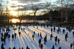 skate (greenelent) Tags: nyc winter light sunset people sun brooklyn iceskating skating prospectpark skate photoaday 365 skatingrink