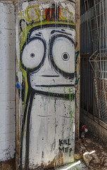 Glummo Powerhouse 2015-01-17 (IMG_5364-66) (ajhaysom) Tags: streetart graffiti australia powerhouse geelong canon1635l canoneos6d glummo