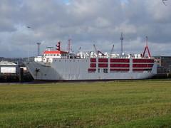 Belfast Docks, 20th of February 2015 (GM 111) Tags: docks star boat ship vessel belfast titanic viking livestock carrier moored