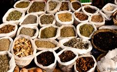 19022015-P1180262 (Philgo61) Tags: africa lumix vacances market panasonic morocco maroc marrakech souk xxx souks marché vacance afrique médina gf1