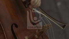 san antonio de  prado 26 (coractos) Tags: musica cultura artesanias manualidades en madera artesania mexicanas ferias artesanales