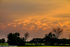 July 21 2016 Mammatus (Dan's Storm Photos & Photography) Tags: thunderstorm thunderstorms thunderhead cloud clouds weather nature sky skyscape skyscapes landscape landscapes mammatus mammatusclouds mammatusdisplay anvil anvils updraft updrafts strongstorms strongthunderstorm strongthunderstorms