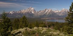 IMG_7655 Teton Range (cmsheehyjr) Tags: cmsheehy colemansheehy nature tetons grandtetonnationalpark wyoming mountains