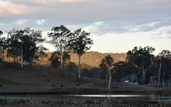 shadows at Rathdowney (dustaway) Tags: trees winter sky water reflections landscape shadows cattle australia lagoon queensland hillside australianlandscape wetland lateafternoon paddocks sequeensland ruralaustralia rathdowney rurallandscape loganvalley forestredgum afternoonlandscape