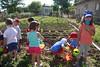 INICIA I - Huerto - Fundación Cerezales