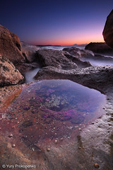 Alien Landscape (renatonovi1) Tags: alien landscape seascape sunrise sea ocean rocks water longexposure beach whalebeach sydney nsw australia nature