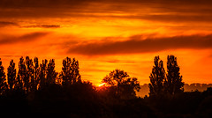 Sunrise 17.07.16 (Myrialejean) Tags: morning blue trees light summer england sky orange cloud sun black weather silhouette sunrise grey dawn early warm day bright unitedkingdom rad gb daybreak grantham