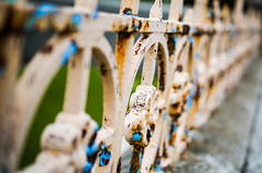 Results of Wild Island weather (judy dean) Tags: fence orkney rust iron peeling paint 2016 judydean sonya6000