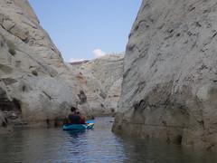 hidden-canyon-kayak-lake-powell-page-arizona-southwest-IMGP3885 (lakepowellhiddencanyonkayak) Tags: kayaking arizona southwest kayakinglakepowell lakepowellkayak paddling hiddencanyonkayak hiddencanyon slotcanyon kayak lakepowell glencanyon page utah glencanyonnationalrecreationarea watersport guidedtour kayakingtour seakayakingtour seakayakinglakepowell arizonahiking arizonakayaking utahhiking utahkayaking recreationarea nationalmonument coloradoriver halfdaytrip lonerockcanyon craiglittle nickmessing lakepowellkayaktours boattourlakepowell campingonlakepowellcanyonkayakaz