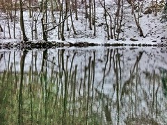 Winterly Tristesse at a Quarry Pond 12 (MJWoerner49) Tags: outdoor nature gloominess murkiness rees weather winter ice rocks structure surface reflection cold frosty winterly wintery wintry lake pond pool quarry quarrypond glacial icy