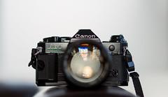 gleam (keith midson) Tags: canon fd sigma 85mm 135mm ae1program ae1 program film camera vintage classic lens