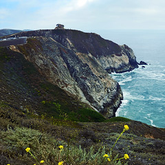 Cali Coast (JINfotografo) Tags: coastside northerncalifornia california montara devilsslide highway1 pacificocean ocean pacific landscape squareformat nikon d7000 sigma sigmalens