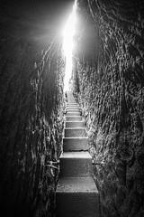 stairway to heaven (koaxial) Tags: p6185307p6majpg koaxial stairs treppe stufen eng narrow path pfad weg himmel heaven sky light dark bw blackandwhite schwarzweiss saxon switzerland rocks felsen