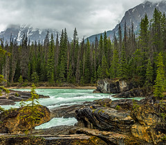 kicking horse river in yoho NP - BC, canada (Russell Scott Images) Tags: canada britishcolumbia bc canadianrockymountains yohonationalpark kickinghorseriver