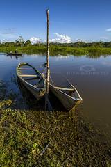 embarcao (Rita Barreto) Tags: embarcao barcos canos comunidadedaamaznia uarini mamirau amaznia amazonas nortedobrasil