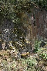 ckuchem-1452 (christine_kuchem) Tags: ahrtal anbau anbaugebiet eifel felsen rotweinwanderweg schiefer schieferfelsen sommer weinanbau weinberg weintraubenanbau weintrauben
