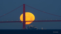 Moon (davidyuweb) Tags: moon full fullmoon close up san francisco sanfrancisco sfist golden gate bridge goldengatebridge
