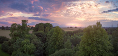 Above the trees (m-n-g photography) Tags: dji phantom 3 standard hdr panorama sunset trees hirsel woods coldstream colourful arial