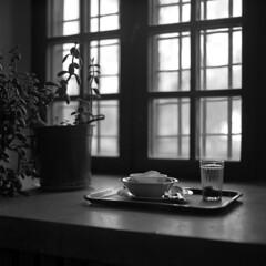 Lunch with a view of a park (ted.kozak) Tags: light bw flower 6x6 film window glass mediumformat square ilfordhp5 tray plates rodinal windowsill hasselblad500cm kozak handdeveloped tedkozak carlzeissplanarc80mmf28t tadaskazakevicius wwwtedkozakcom