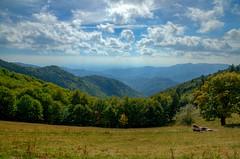 Quelque part dans les Vosges (J-Dell) Tags: b c n h pre f p nuage foret hdr colline bovin