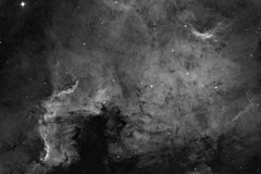 North America Nebula - Nbuleuse de l'Amrique du Nord - NGC7000 (Astrochoupe) Tags: longexposure stars space nebula astronomy universe espace toiles sla astronomie univers northamericanebula longuepose ngc7000 nebuleuse astrometrydotnet:status=solved socitlorrainedastronomie nbuleusedelamriquedunord astrometrydotnet:id=nova953573