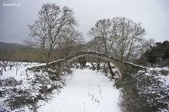 Alamanou (kzappaster) Tags: bridge winter snow sony greece vivitar a7 larissa stonebridge 19mm thessaly mirrorless alamanou vivitar19mmf38 19mmf38 sonya7 compactsystemcamera