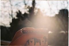 000024 (habologique) Tags: winter sun hot film coffee analog 35mm canon tea grain steam mm analogue canonae1 50 scandinavia analogphotography fd sunflare dalahorse filmphotography dalahast dmparadies