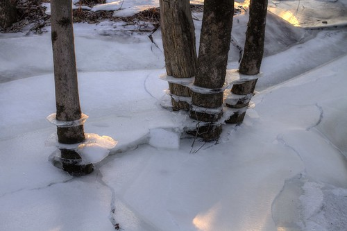 winter cold ice river fredericton trail newbrunswick salamanca cracks saintjohnriver