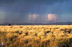 USA 2014 Nevada (creationtao) Tags: light usa rain montagne soleil lumire nevada champs pluie route rayon nuage prairies chemin orage champ lumires amrique cloture bls