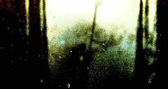 Fenster (hutschinetto) Tags: film:iso=80 teanol film:brand=orwo film:name=orwonp2080 orwonp2080 filmdev:recipe=9842