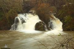 Wasserfall (CoyoteFotos) Tags: wasser wasserfall pyrmont wandern langzeitbelichtung traumpfad pyrmonterfelsensteig