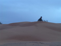 Climbing the Desolate Dunes of the Sahara