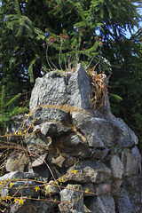 Turret Topper (lefeber) Tags: flowers trees newyork wall architecture rural fence town village stonewall turret rockwall smalltown hudsonvalley driedleaves driedplants highlandfalls