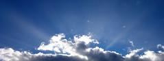 All ablaze! (SteveJM2009) Tags: uk winter light sky sun colour beauty clouds dorset rays holt february shiningthrough stevemaskell 2015