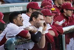 untitled (christinalong15) Tags: college sports athletics baseball nike arkansas sec ncaa mlb razorbacks beisbol milb